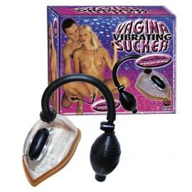 Vibrating Vagina Sucker