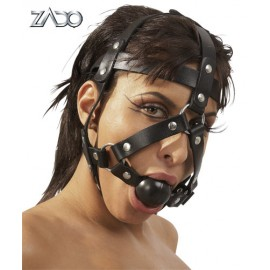 Head Harness & Gag
