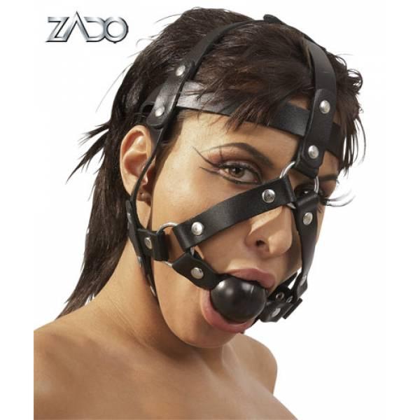 Head Harness & Gag
