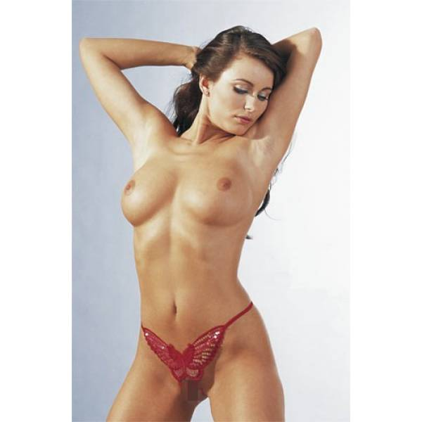 Perhos-Stringit Punainen